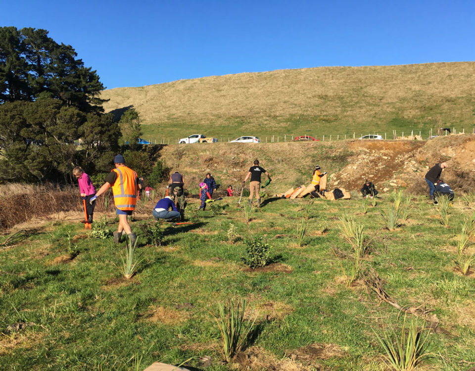 Photo of planting day at Drysdale Farm on Manawatū River Valley Rd, June 2019